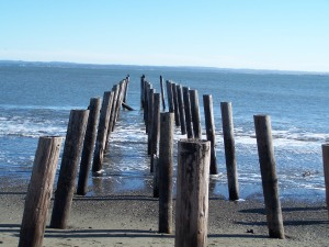 Old Pier at Ocean Shores